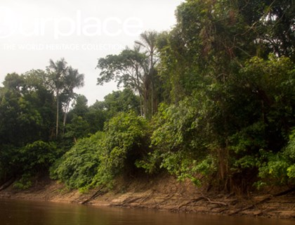 Central Amazon Conservation Complex